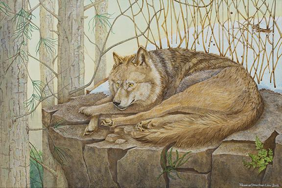 Acrylic Wolf Painting